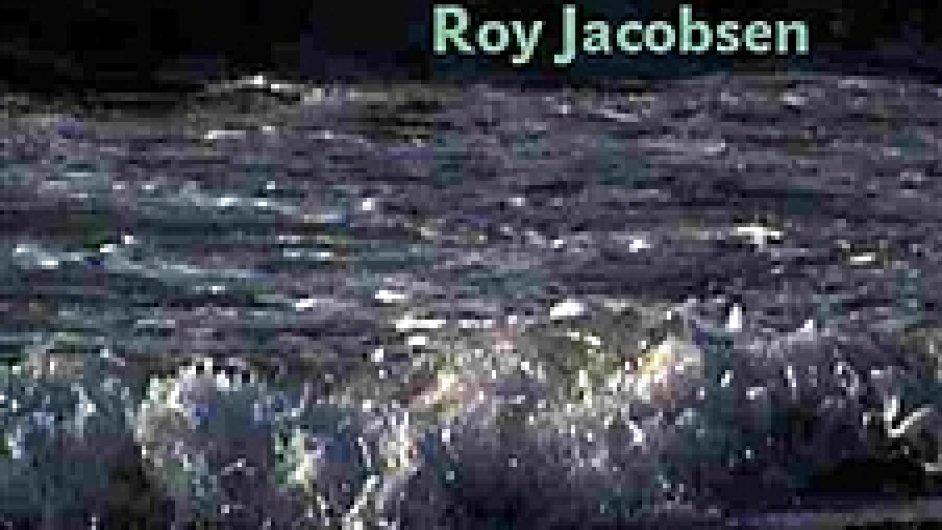 Roy Jacobsen: Bílý oceán