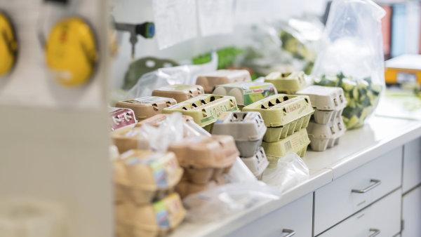 Čeští dovozci budou muset nechat vajíčka z Nizozemska a Belgie laboratorně kontrolovat.