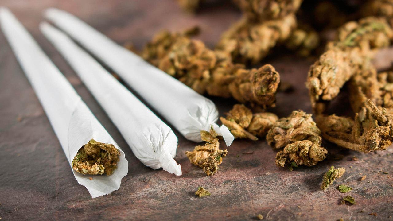 Každý rok vypěstuje otec nemocné Martiny Kafkovéna2200 léčebných marihuanových cigaret. To zdaleka překračuje hranici deseti gramů, při jejímž překročení se zpřestupku stává trestný čin.