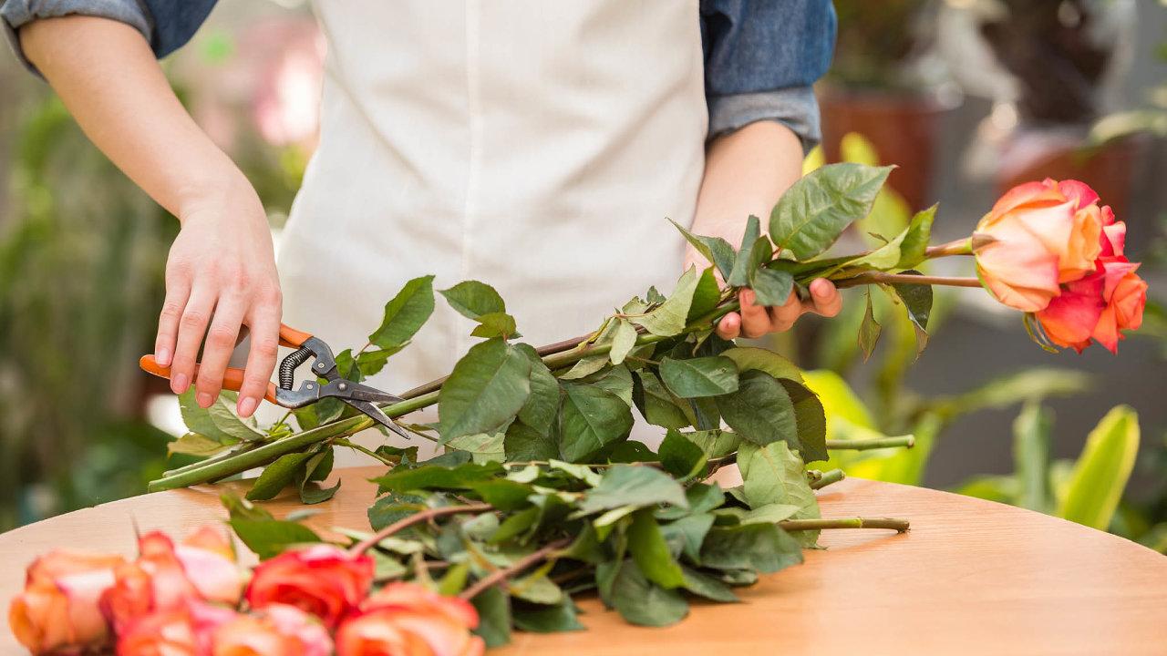 Řezaná růže velkokvětá stála vroce 2013 natuzemském trhu vprůměru 50 korun adoloňského roku podražila na68,4 Kč.