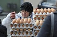 Vejce na českém trhu jsou kvůli obchodníkům a drůbežářům už dražší než v zemích, kde vypukl skandál s insekticidem