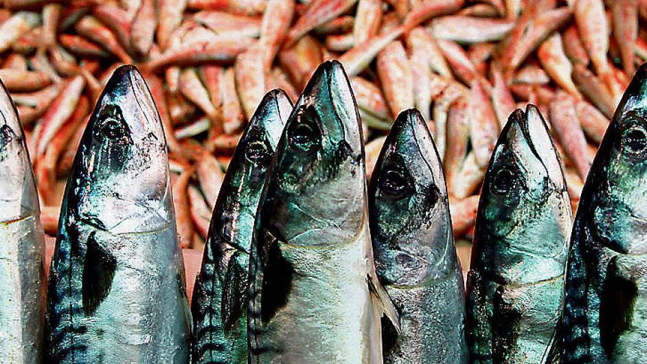 Potraviny - ilustrační foto