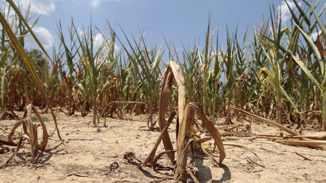 Sucho v americkém státě Indiana