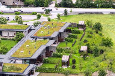 VČesku bylo loni téměř 250 tisíc metrů čtverečních zelených střech.
