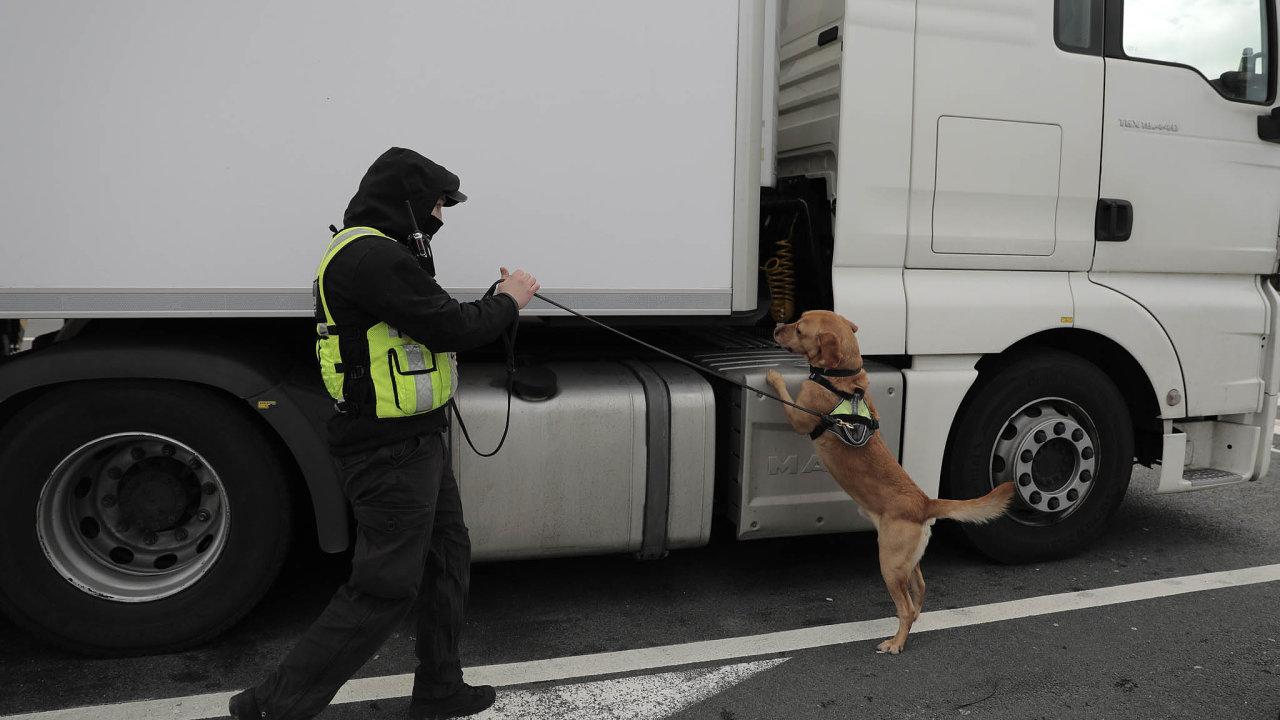 Psovod kontroluje se svým čtyřnohým pomocníkem kamion směřující z Calais do Velké Británie prvním trajektem vypraveným po brexitu v pátek 1. ledna 2021.