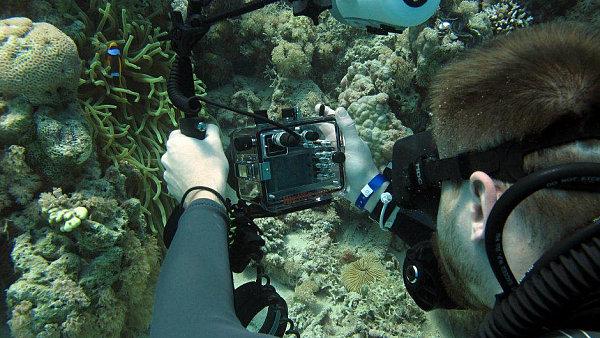 Podvodní fotografování