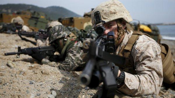 Spole�n� man�vry zahrnuj� dv� r�zn� vojensk� cvi�en� - Ilustra�n� foto.