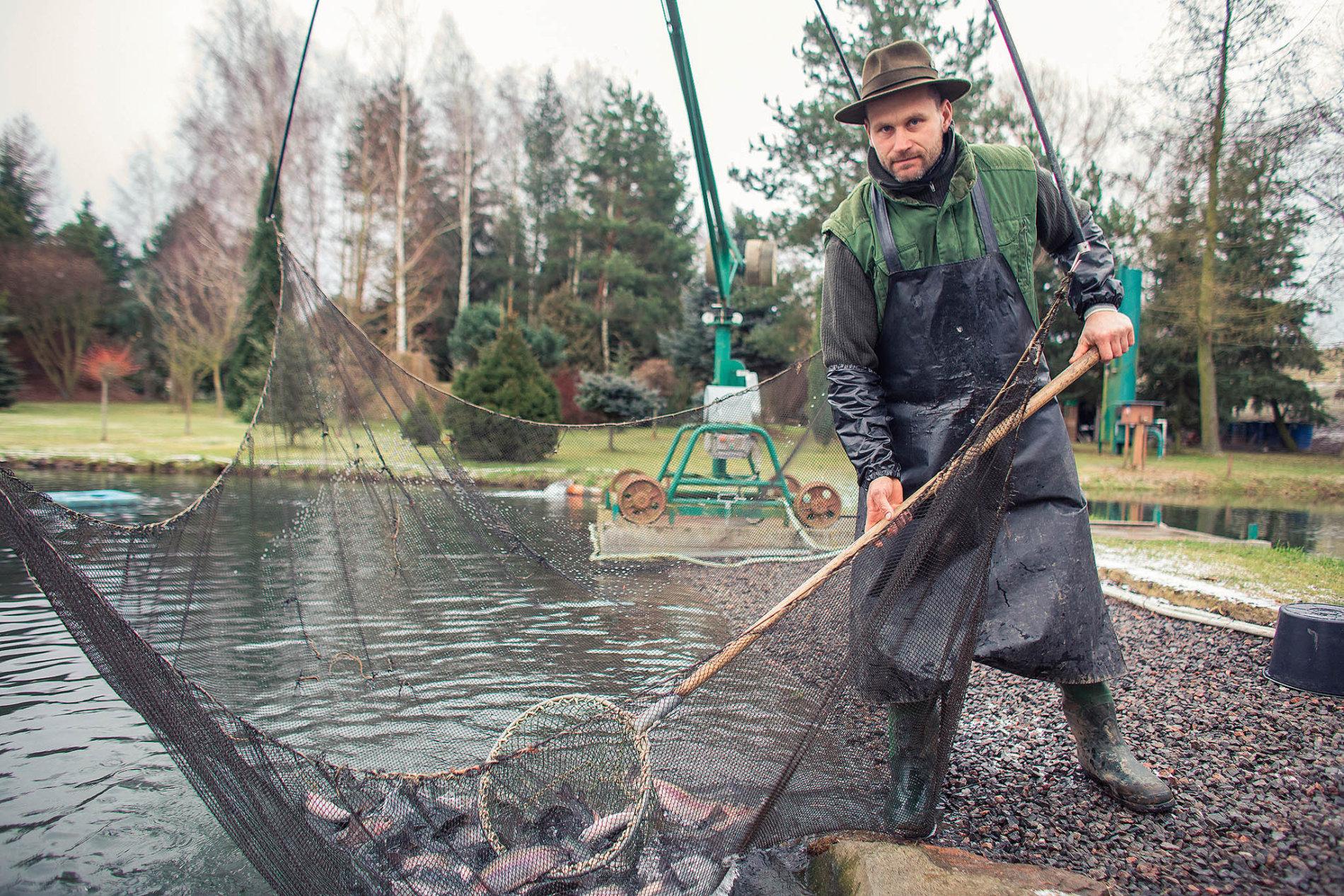 """""""V rybí říši platí, že samečci jsou krásnější než samičky. U lidí je to naopak,"""" srovnává vodní a suchozemský svět farmář Jiří Kokora."""