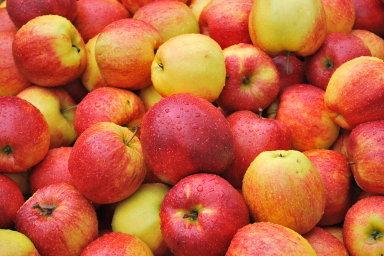 Ceny ovoce klesly o 43,3 procenta - Ilustrační foto.