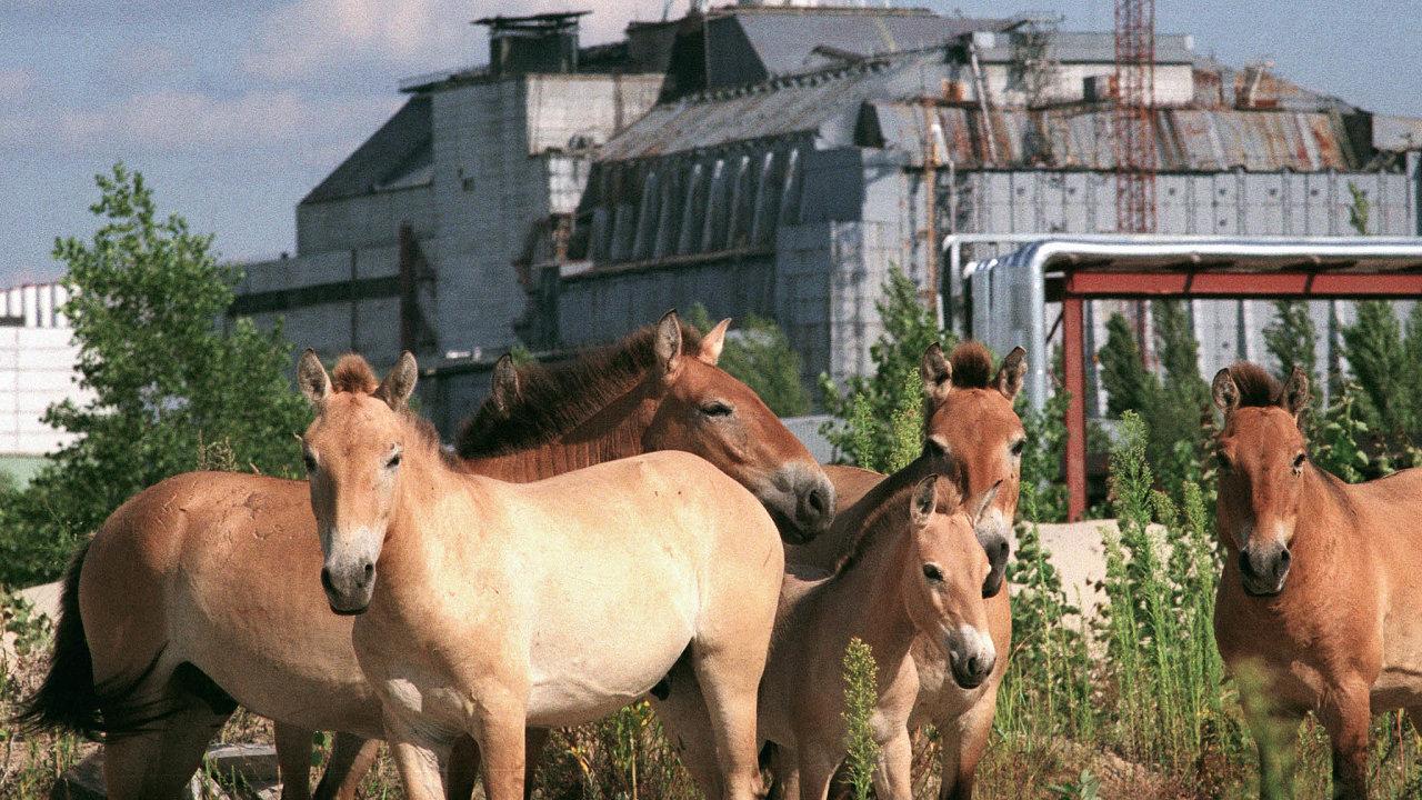 Václav Vašků: Černobyl, jak ho už nikdo neuvidí