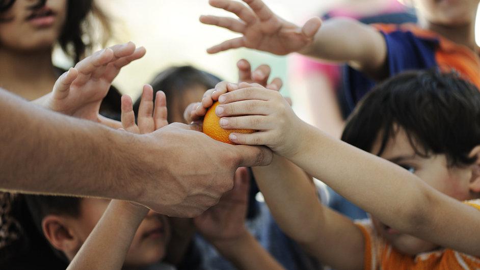 Češi dají ročně na charitu skoro 2 miliardy korun, ilustrační foto