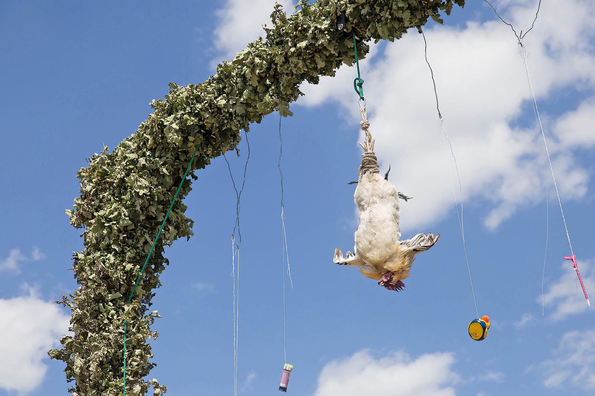 Pták je nakonec vydražen. Symbolicky– otohle maso není zájem.