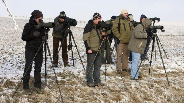 Pozorovatelé ptáků