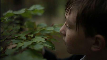 Z videa Švestky od Marka Thera