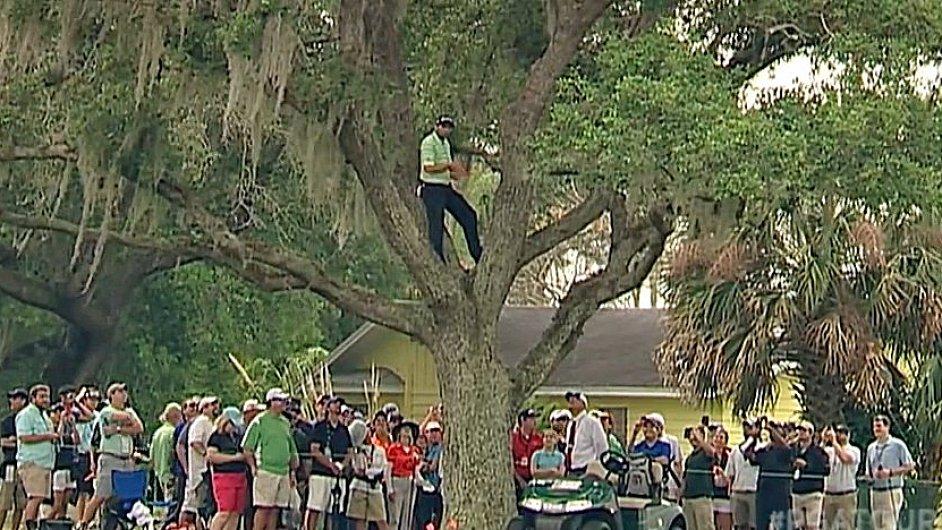 Sergio García na stromě