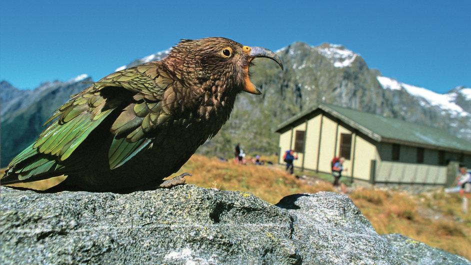 NP Fiordland, Jižní ostrov, Nový Zéland