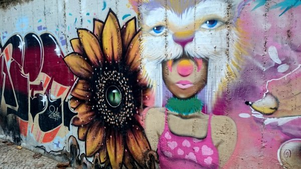 Jižní Amerika se pozvolna stává velmocí městského a pouličního umění.