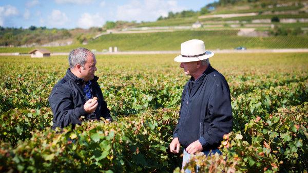 První anglická učebnice pro vinaře a milovníky vína vznikla na brněnské jazykové škole.