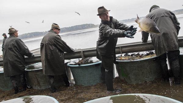 Rybáři zatím nemusejí vracet rybníky, které dříve patřily církvím. Čeká se však na rozhodnutí Nejvyššího soudu.