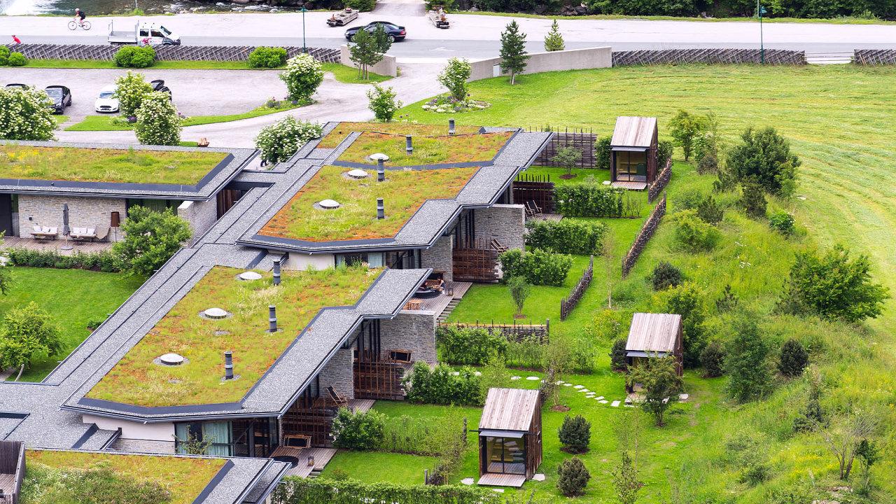 VČesku přibylo loni téměř 250 tisíc metrů čtverečních zelených střech.