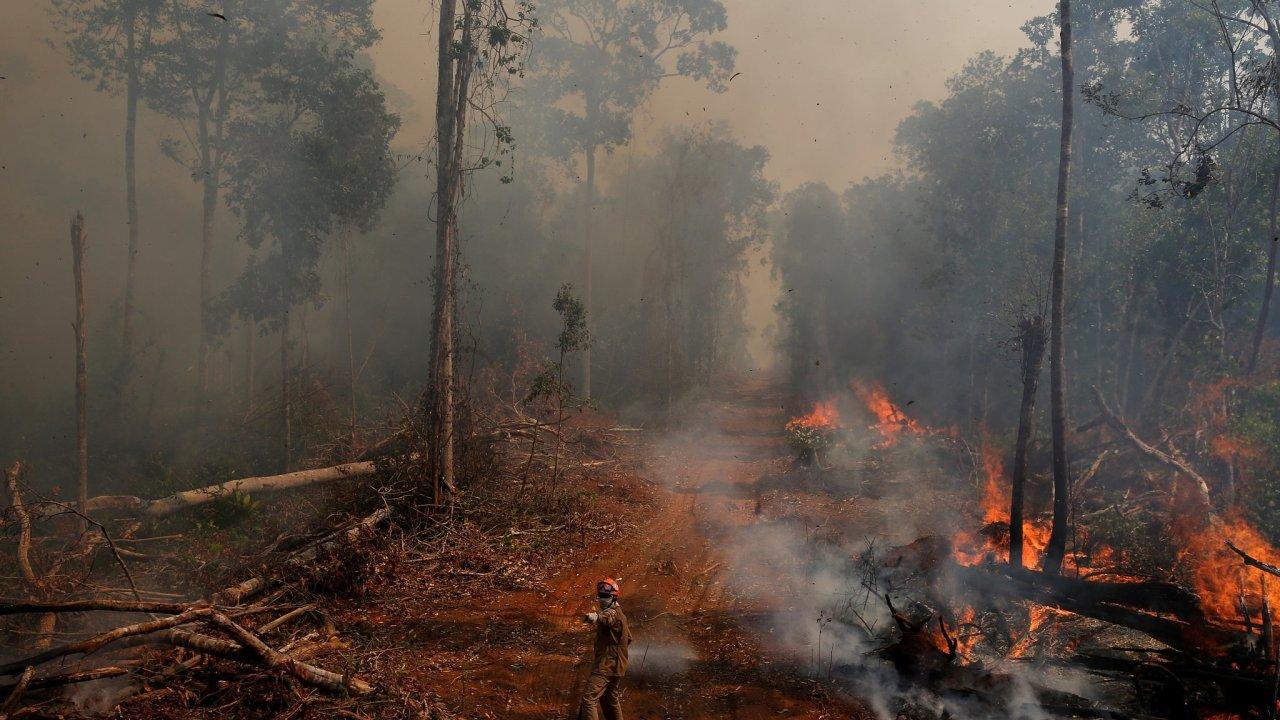 Amazonie Brazílie prales