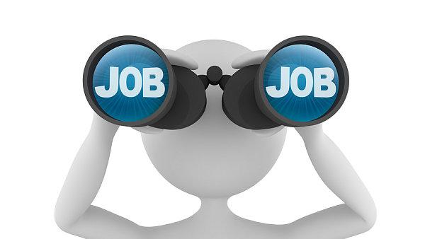 Hledání práce