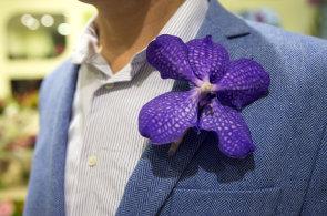 Jak ozdobit klopu saka? Holandský patent udělal z květů orchidejí živý šperk