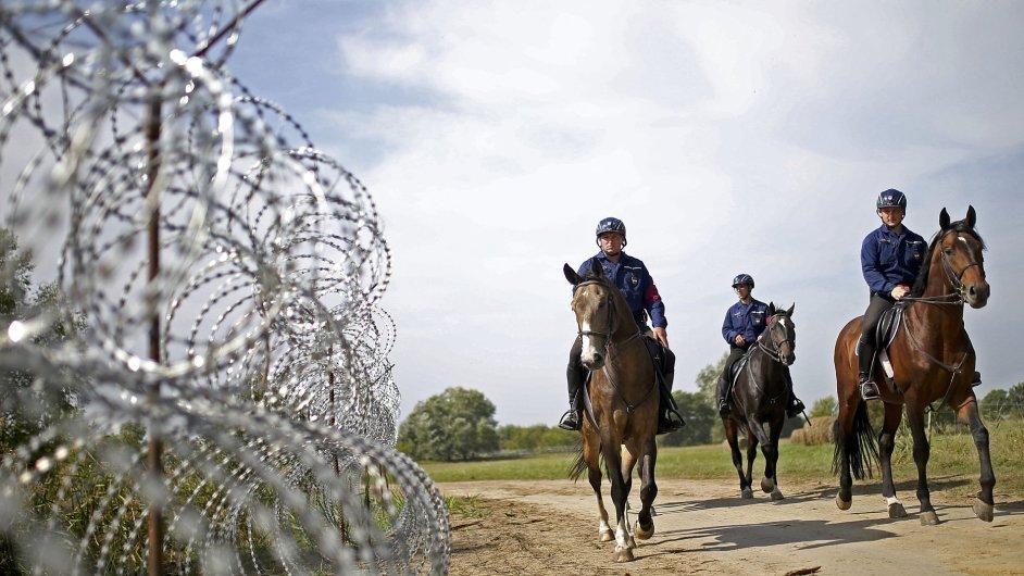 Maďarští policisté hlídkují na koních poblíž hranice se Srbskem.
