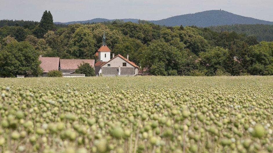 Pozemky - ilustrační foto
