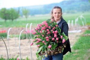 Náruč tulipánů. Jejich letošní sezona byla krátká. Vykvetly během jediného týdne. Ty, které drží v náručí Karol Benešová, jsou už vlastně na odpis.