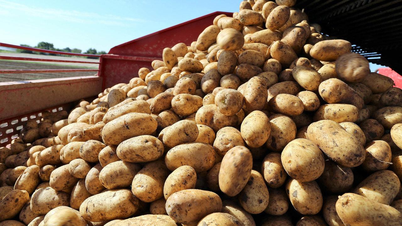 K výraznému meziročnímu růstu cen potravin přispěly velkou měrou brambory, které podražily o 23,5 procenta.