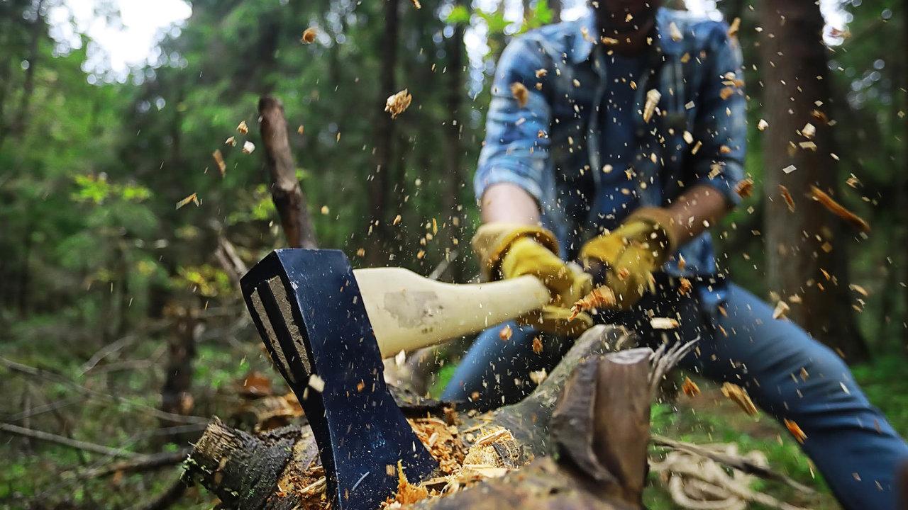 Vlastníci lesů jsou svazováni čím dál rozsáhlejším balíkem zákazů aomezení, jejichž účel asmysl jim často není zřejmý. Lesník například musí prokázat, že dřevo, které vesvém revíru vytěžil, bylo získáno legálně.