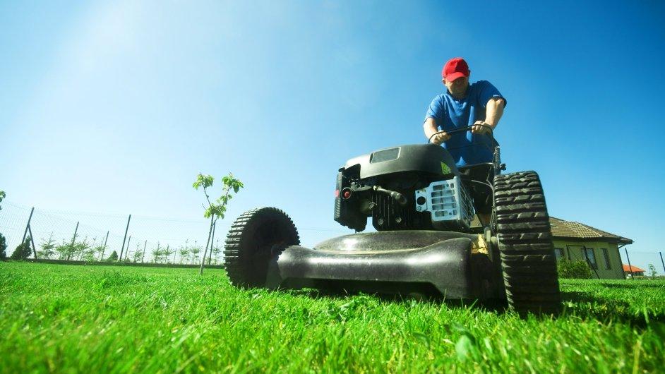 Za osivo zaplatíte 60 až 100 Kč za 0,5 kg. Cena travního koberce se může vyšplhat od sto korun za metr čtvereční až k tisícikoruně.