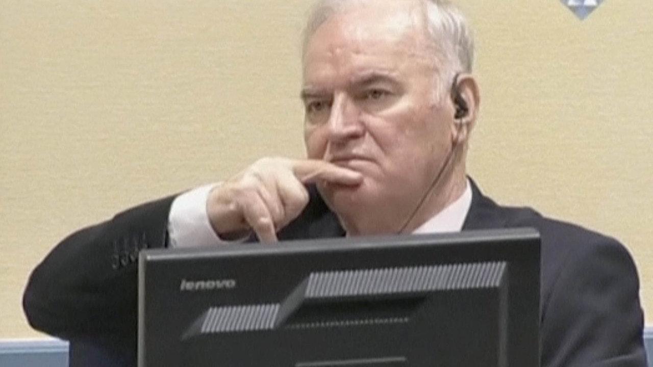 Odsouzení Ratka Mladiče na doživotí uvítali například vysoký komisař OSN pro lidská práva Zaíd Husajn nebo generální tajemník Severoatlantické aliance Jens Stoltenberg.