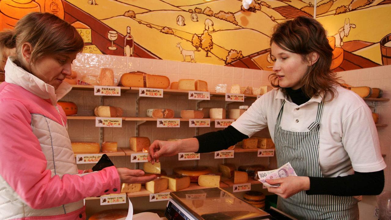 Návratu žen na pracovní trh by pomohla také cenově dostupná nabídka služeb pro domácnost, jež v některých evropských zemích dotuje stát.