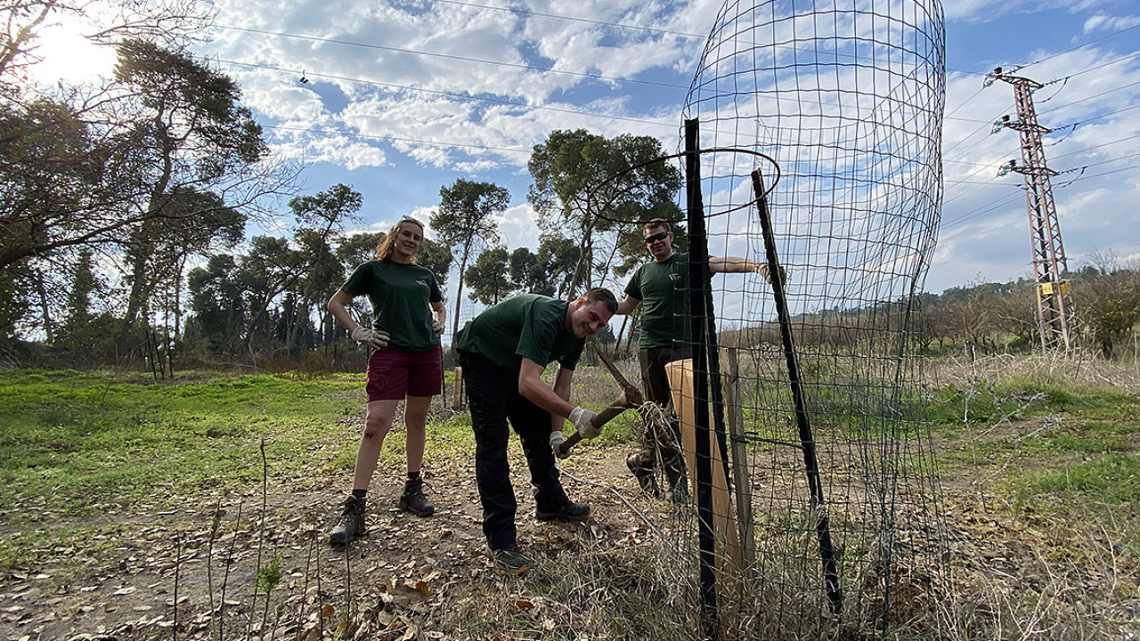 Studenti Mendelovy univerzity pomáhali vloni sobnovou Masarykova lesa v Izraeli.
