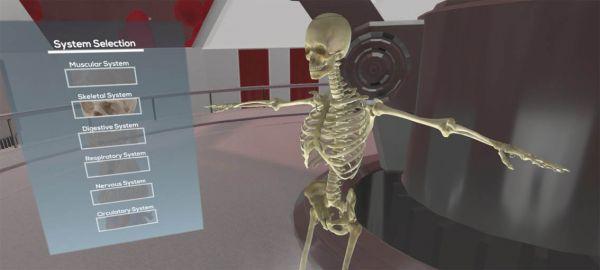 the body vr anatomy viewer 2