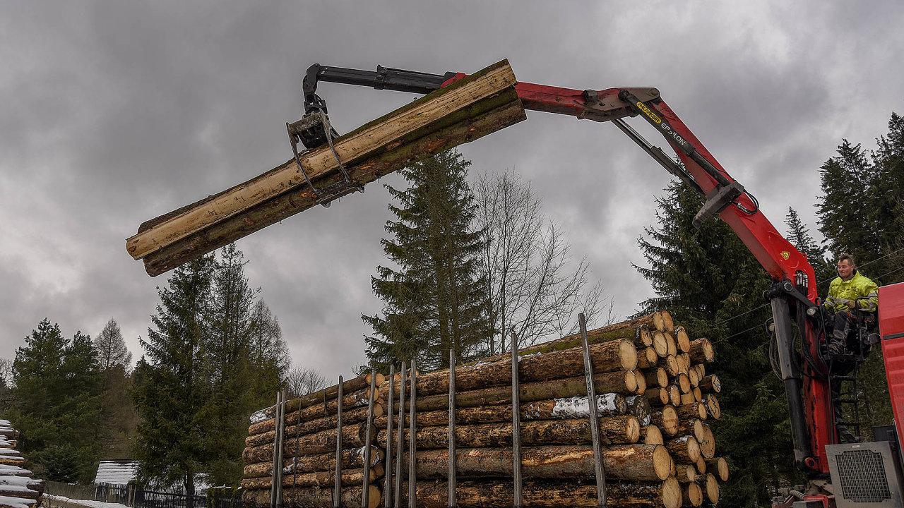 Zvýšení letošní těžby potvrdila již lednová čísla, kdy podnik zvedl těžbu téměř dvojnásobně skoro najeden milion metrů krychlových dřeva.