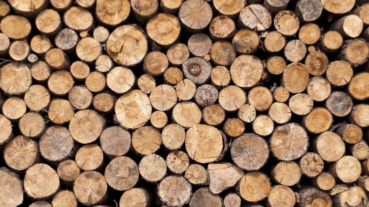 Přírodní dřevo zatím vítězí. Američtí vědci testují výrobu dřeva zrostlinných buněk. Výsledný materiál však zatím nedosahuje pevnosti dřeva zlesů.