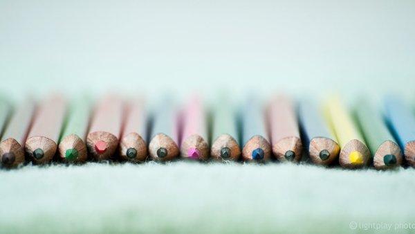 Spektrum barev je velmi pestré, lidé ale nejčastěji sází na modrou - Ilustrační foto.