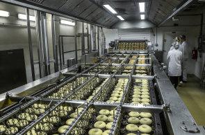 Česko dobyly donuty. V Kladně jich denně vyrobí přes 300 tisíc, většinu snědí Češi