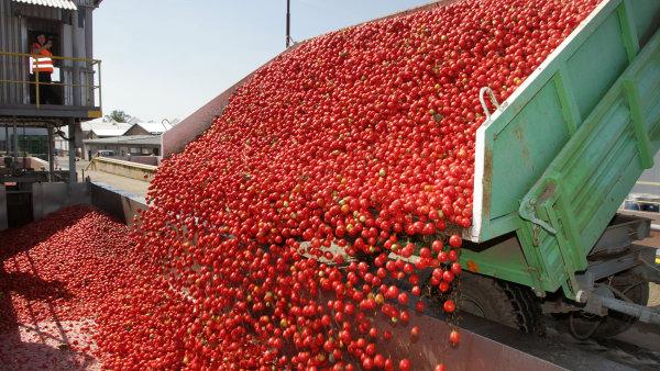 Cesta rajčete z pole do kečupu.