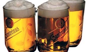 Gambrinus pivo