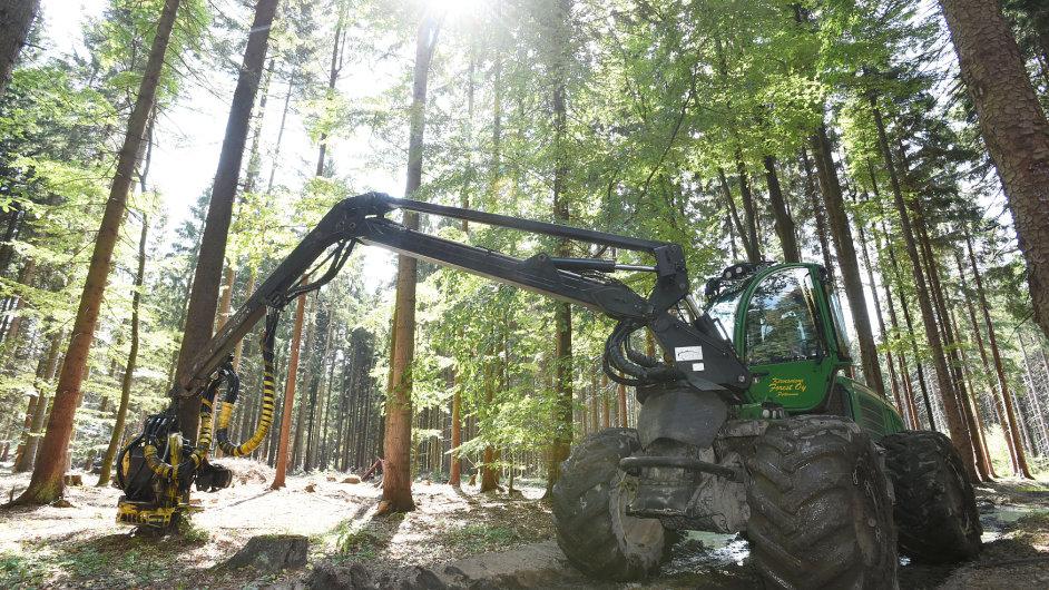 Práce v lese je fyzicky náročná - Ilustrační foto