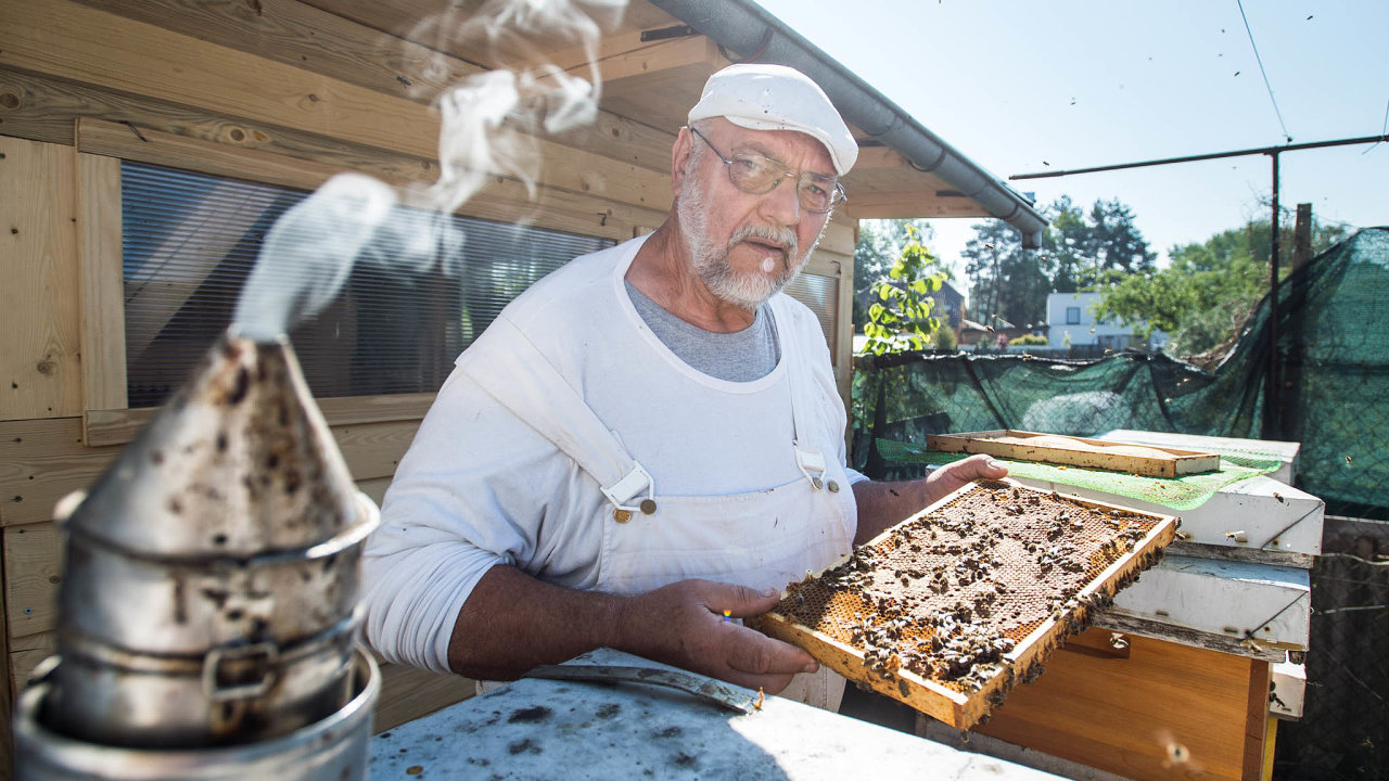 Mrtvé včely. Včelař Evžen Báchor si– stejně jako desítky dalších včelařů– zoufá nad svými mrtvými včelami.