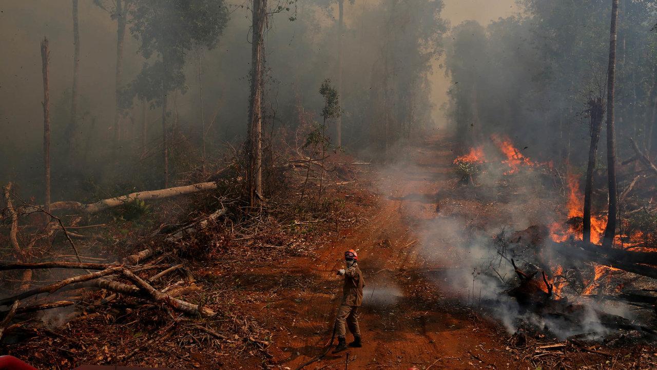 Hořící prales. Kvůli nelegálnímu mýcení Amazonie se Francie, Rakousko adalší státy Evropské unie zdráhají schválit dohodu suskupením Mercosur.